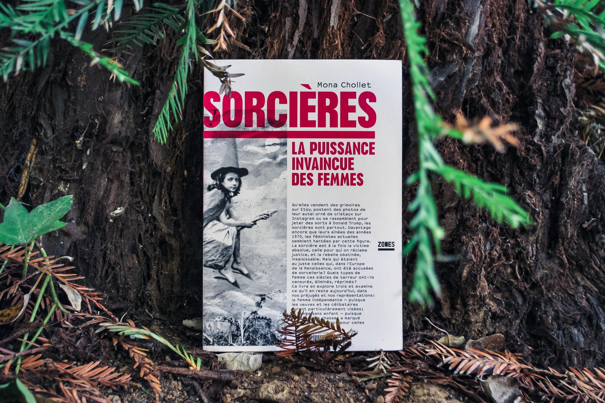livres-a-lire-confinement-les-sorcieres-la-puissance-invaincue-des-femmes-mona-chollet